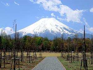 富士散策公園