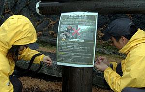富士山レンジャー 活動の様子