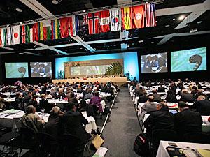ユネスコの第31回世界遺産委員会