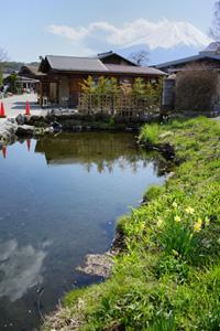 忍野八海・鏡池