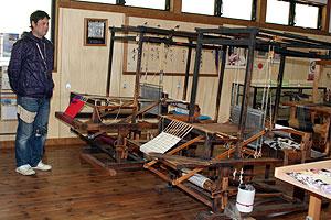 館内に並ぶ織機