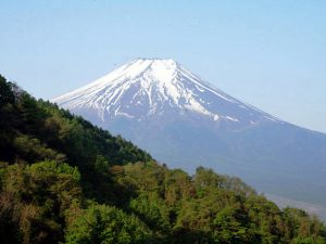 杓子山からの富士