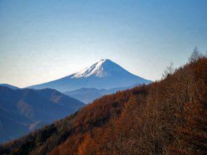 柳沢峠からの富士