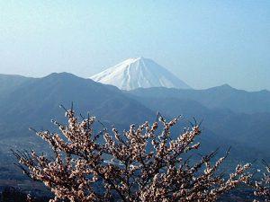 笛吹川フルーツ公園からの富士