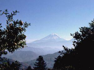 高村光太郎文学碑からの富士