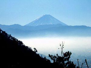 みゆきの森みはらし広場からの富士