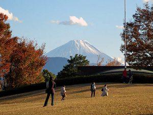 県立美術館からの富士