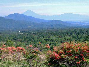 美し森からの富士