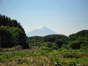 三峰の丘からの富士