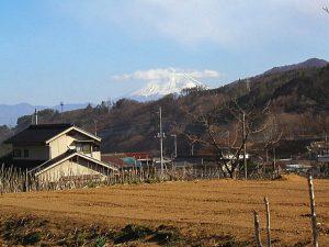 台ケ原宿からの富士