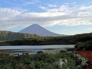 西湖畔・根場浜からの富士