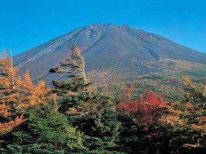 富士山御庭・奥庭
