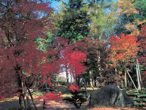 山中湖文学の森