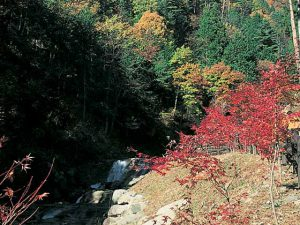三ツ峠ハイキングコース神鈴の滝周辺