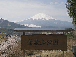 堂尾山公園