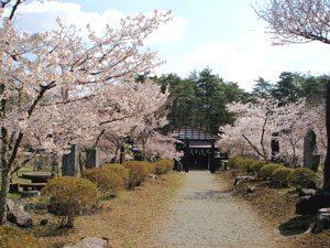 ふじさんミュージアム(富士吉田市歴史民俗博物館)周辺