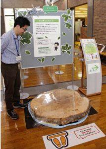 森林認証制度やエコラベル紹介