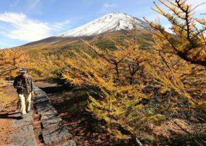 カラマツなどが色づく奥庭自然公園=富士山5合目