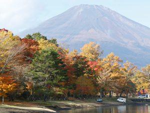紅葉と富士の好ポイント