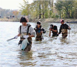河口湖でごみを拾うボランティア=富士河口湖町船津