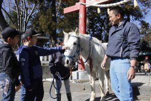 小室浅間神社の神馬と触れ合う子どもたち。馬を身近に感じてもらう取り組みが進んでいる=富士吉田市下吉田3丁目