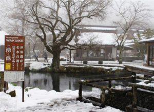 忍野八海は新型コロナウイルス感染拡大防止のための「外出自粛」と降雪の影響で閑散としていた=忍野村忍草