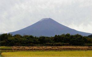 「初雪化粧」が宣言された富士山=富士吉田市上吉田東9丁目