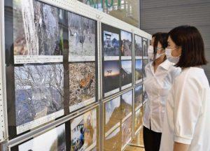 県立図書館で富士山レンジャー写真展