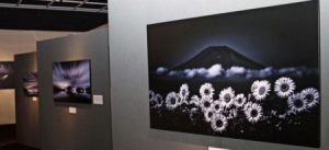 さまざまな富士山の写真が並ぶ展示会=富士吉田・ふじさんミュージアム