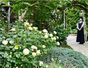 色とりどりの花を咲かせているバラ=富士河口湖町河口(2日撮影)