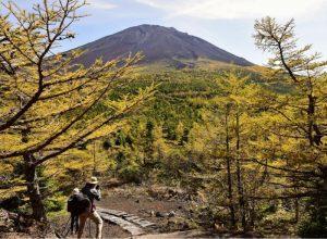 富士山5合目 紅葉始まる